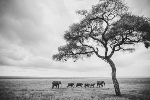 Africa 2014  0693