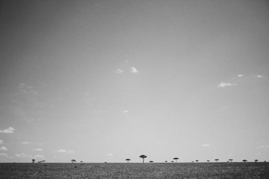 Africa 2014  2490
