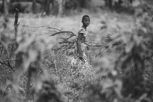 Africa 2014  2242