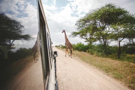 Africa 2014  2237